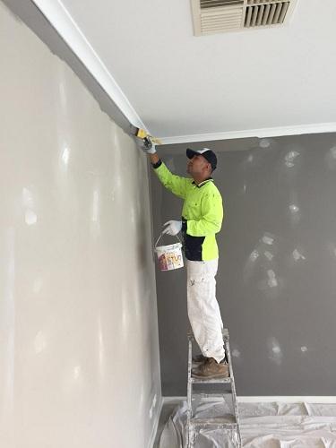 Professional Painters Narre Warren North